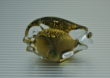 Scultura MARCOLIN ART CRYSTAL FISH 24 KT arte vintage